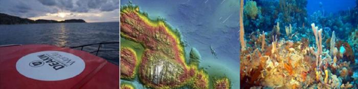 Marine Habitat